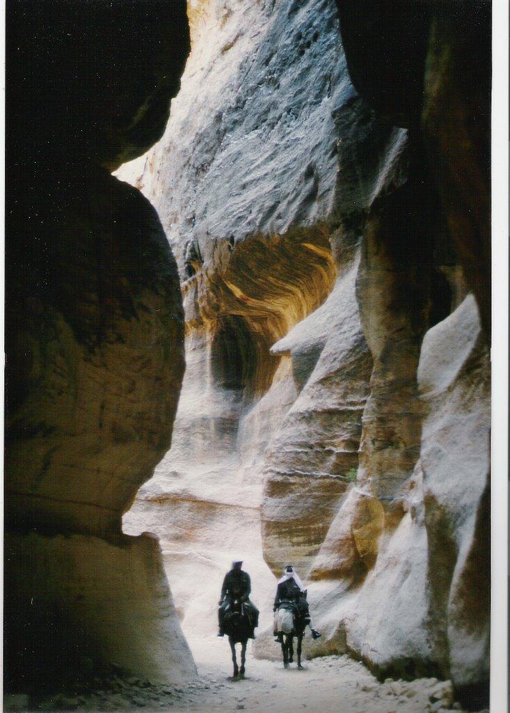 petra reist nach kalifornien pdf