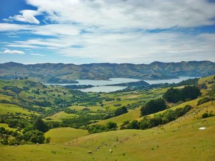 Neuseeland Akaroa Halbinsel 1.jpg